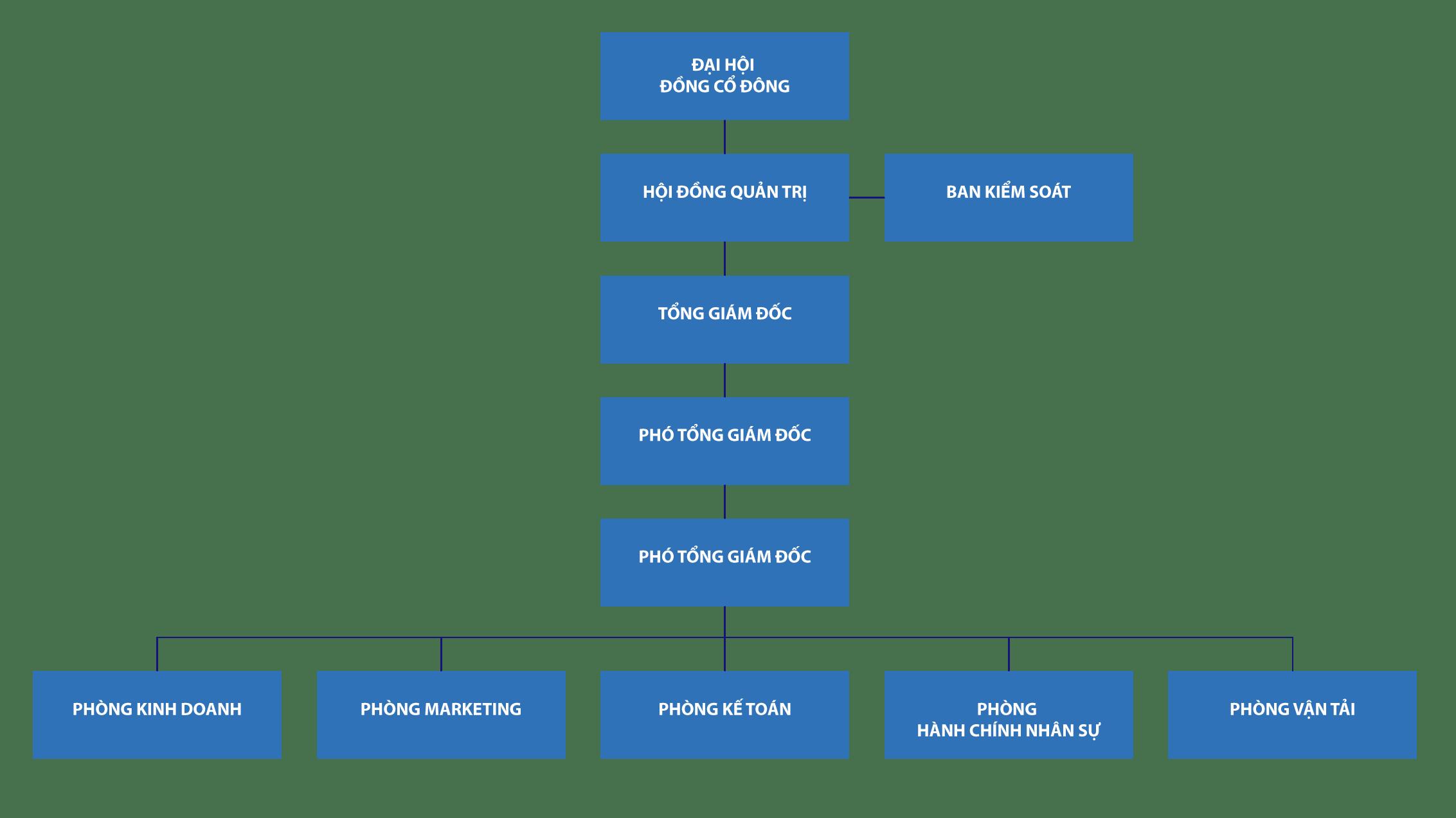 sơ đồ tổ chức
