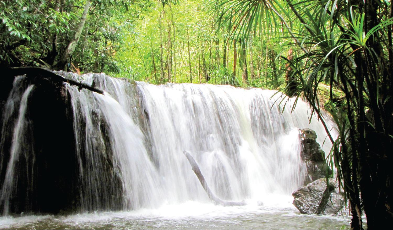 Suối Tranh – Bức Tranh Thiên Nhiên Rực Rỡ Ở Phú Quốc